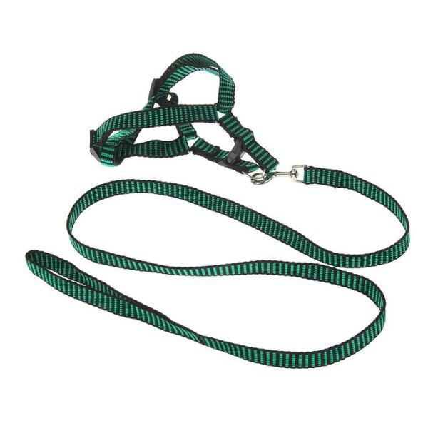 """Комплект """"рельефный"""", шлейка 36-49 см, зелёно-чёрный"""