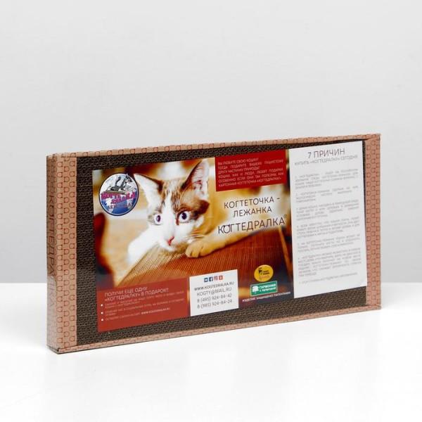 Когтеточка-лежанка для кошек 50x25 см